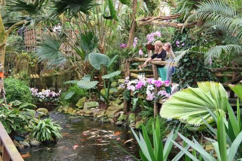 25 oktober orchideeenhoeve met pannenkoekenlunch